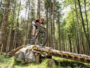 Mountainbiker fährt am Single Trail in der Bike Arena Obertraun im Salzkammergut über eine Holzbrücke (Foto: Florian Neumüller Lichtspieler)
