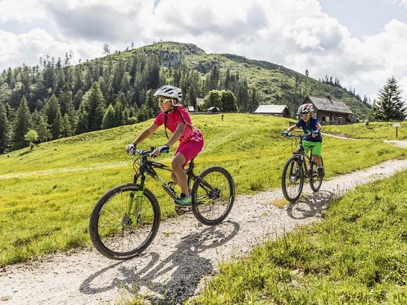Mountainbike Soft Trail durch Bad Goisern auf die Almen