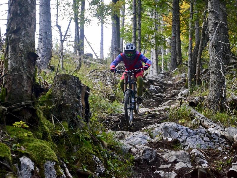 Herausfordernde Stone- und Wurzelpassagen auf der Downhill Strecke in Ebensee am Traunsee (Foto: Verein 50 Grad)