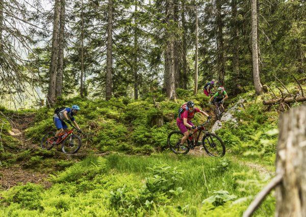 Mountainbike-Touren Tipp
