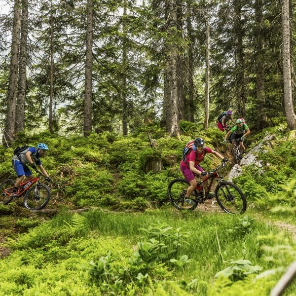 Mountainbike-Touren Tipp