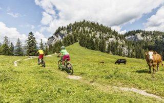 Mountainbiken auf der Hütteneck Alm Salzkammergut (Foto: Andreas Meyer)