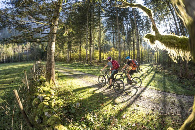 Mountainbikestrecke zum Koppenwinkelsee in Obertraun (Foto: WOM Medien GmbH, Andreas Meyer)