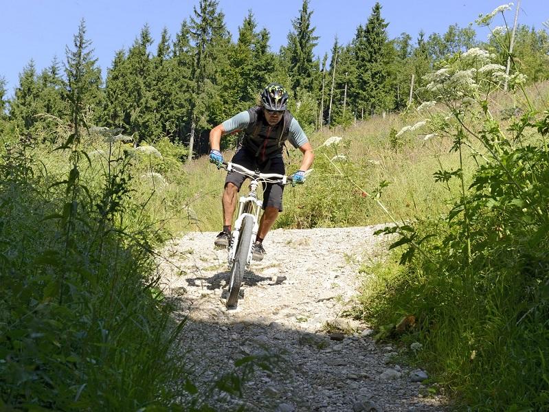 Mountainbiketouren im Traunsee-Almtal-Salzkammergut